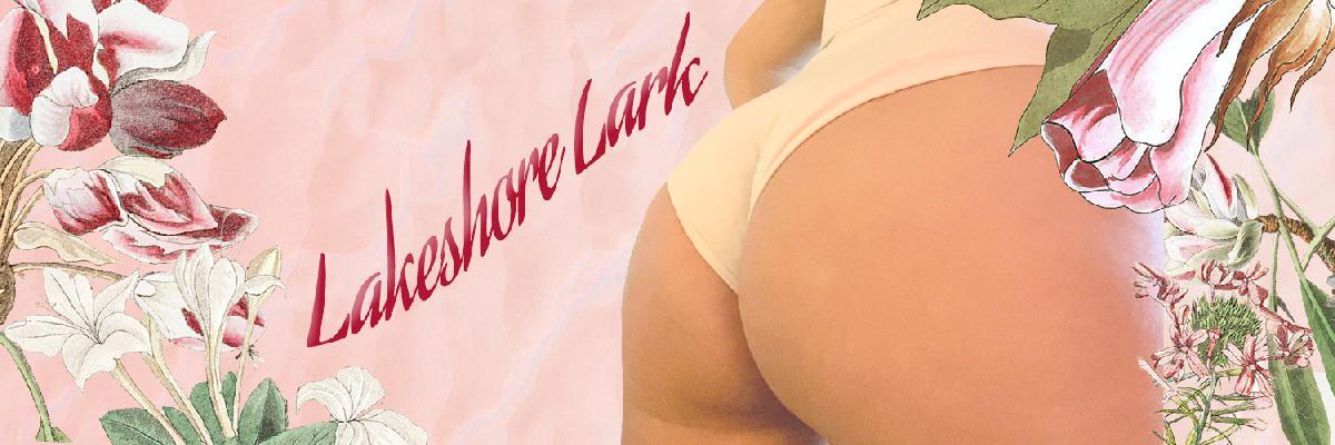 @lakeshorelark